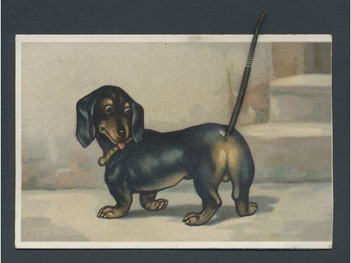 Sweden. Postcard brev,, Novelty postcard. Dog (dachshund) with a movable tail. Address and message written but not mailed. Condition fine.